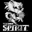 [team_Team_Spirit]
